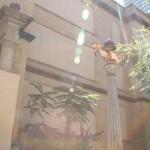 Dallas-20120910-084943-042